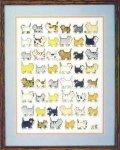 Неуемный Робин и 1000 кошек